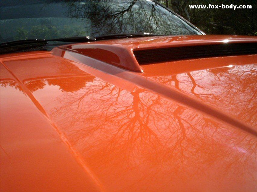 1982 Mustang Gt >> www.fox-body.com